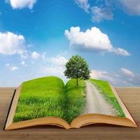 Bild zum Weblog BookCrossing - 6000 Gelegenheiten