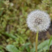 Bild zum Weblog Sing4Jesus-Wochenende in Voitsberg